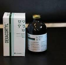 dexacortyj 03